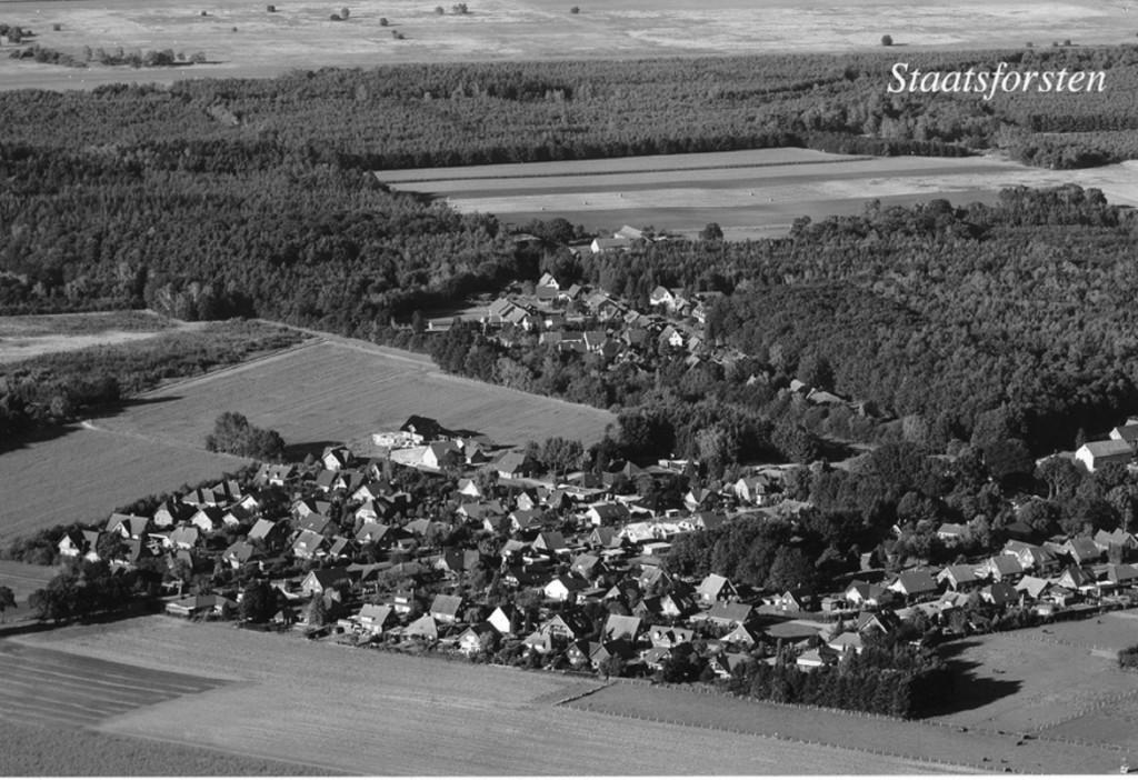 Luftbild-Staatsforsten-MT-SW